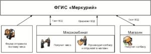 Схема ФГИС Меркурий