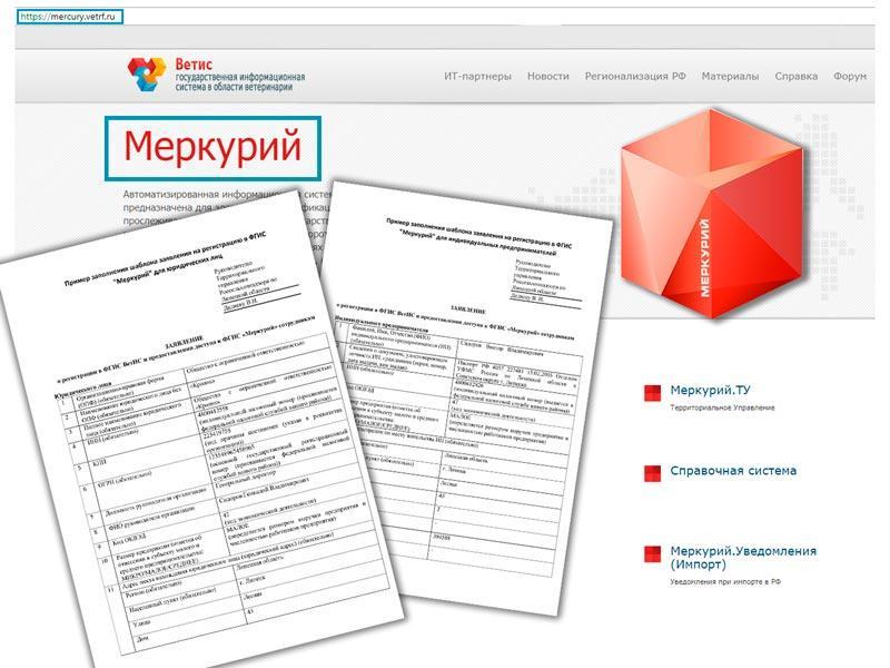 Заявление Меркурий образец заполнения для ИП и ЮЛ