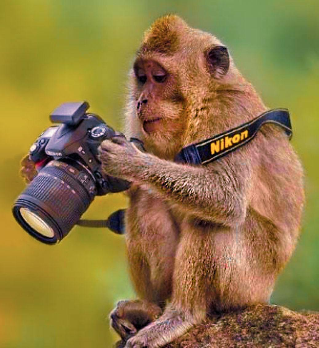 кассовый аппарат для фотографа