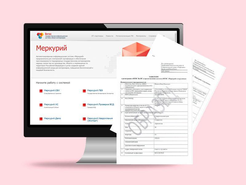 Регистрация в системе меркурий для ИП