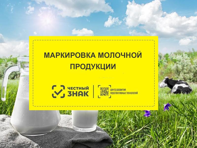 Маркировка молочной продукции Честный Знак в 2021 году